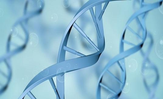 国家药监局保健食品_重大通知!遗传办发布简化审批流程通知!